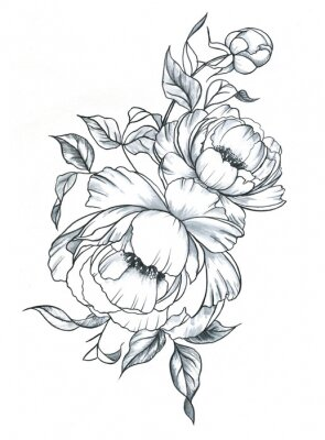 Sticker Hand drawn line art ink and watercolor peonies in graphic style. Feminine tattoo sketch, spring floral blooming, black and white illustration.