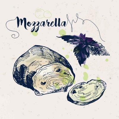Sticker Hand drawn mozzarella cheese and basil leaves