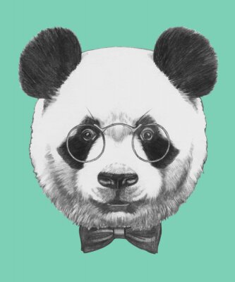Sticker Hand drawn portrait of Panda with glasses and bow tie. Vector isolated elements.
