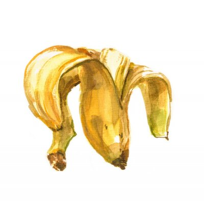 Sticker Hand painted watercolor illustration of a banana