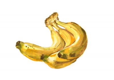 Sticker Hand painted watercolor illustration of a bananas