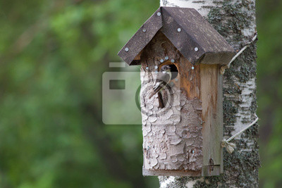 Sticker Handmade birdhouse and a small bird