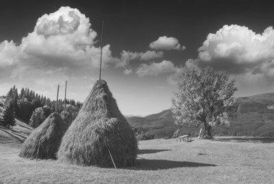 Haystacks in a Carpathian summer valley. Monochrome