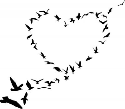 Sticker heart from gull silhouettes isolated on white