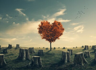 Sticker Heart shaped tree in cleared forest