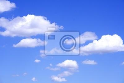 Sticker heaven