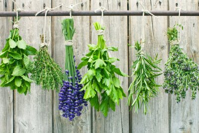 Sticker herbs