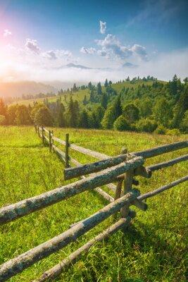 Idylic carpathian summer landscape