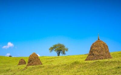 Idylic carpathian summer landscape with blue sky