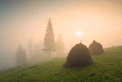 Idyllic carpathian landscape
