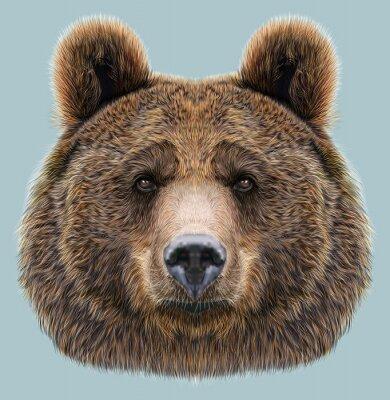 Sticker Illustrated Portrait of Bear on blue background