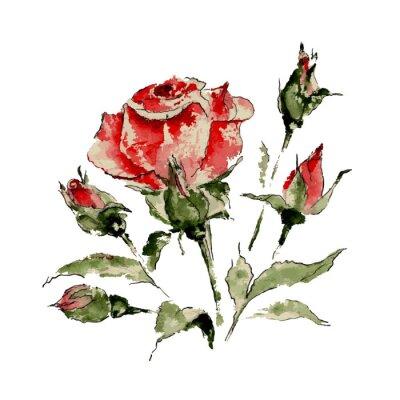 Sticker Illustration of red rose