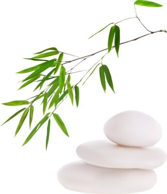 Sticker isolated white stones and green bamboo illustration