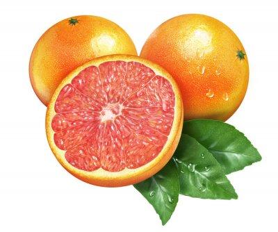 Sticker Juicy fresh of grapefruit on whtie background