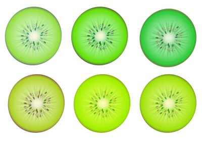 Sticker Kiwi fruit slices in multiple green shade color