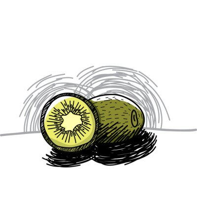 Sticker Kiwi with ink hand drawn-Vector illustration