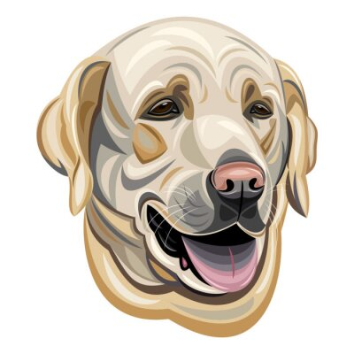 Sticker Labrador