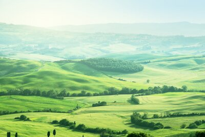 Sticker landscape in Tuscany, Italy