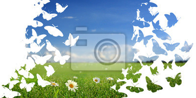 landscape made of flying butterflies