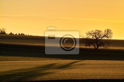 lanscape of country