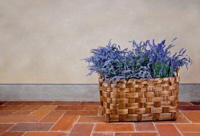 Sticker Lavender in a basket