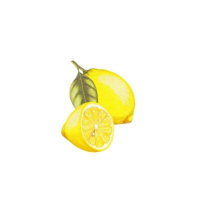 Sticker Lemon illustration
