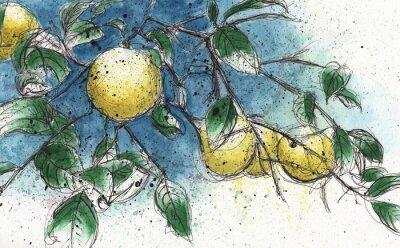Sticker Lemon tree branch