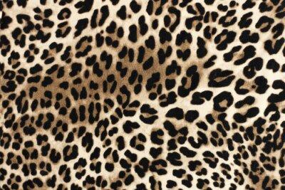 Sticker Leopard fablic texture. Fashion textile background.