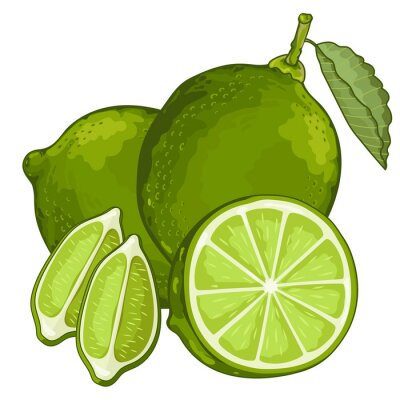 Sticker Lime Isolated on white background.