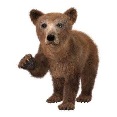 Sticker Little Brown Bear