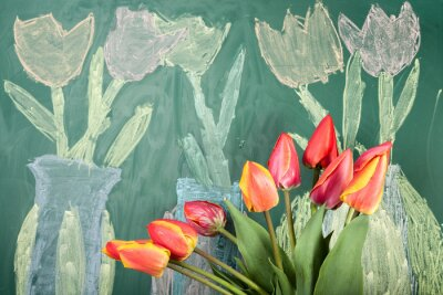 Sticker Live flowers and children's chalk drawing of tulips on a blackboard