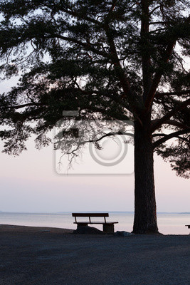 Sticker Lonely bench and big tree silhouette
