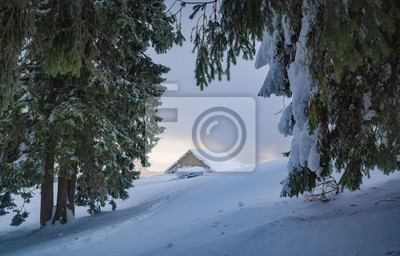 Lonely house in a winter forest