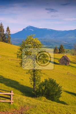 Lonely wooden house on a meadow