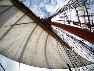 Sticker looking up at sails on a tallship