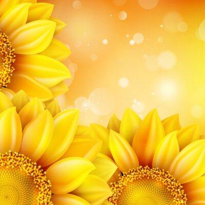 Sticker Macro SunFlower Background. EPS 10