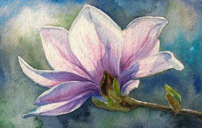 Sticker Magnolia blossom on branch.Watercolors.