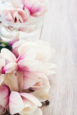 Sticker magnolia flowers