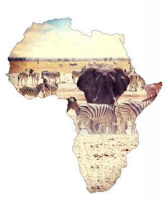 Sticker Map of africa continent concept, safari on waterhole with elephants