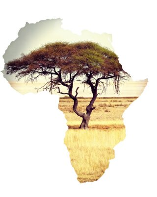 Sticker Map of africa continent concept with acacia