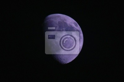 moon mauve