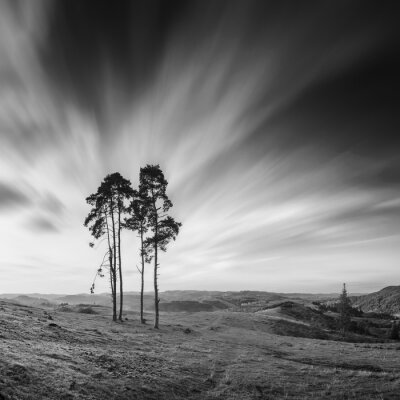 Motion sky. Monochrome