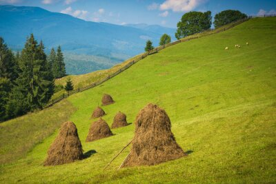 Mountain valley with haystacks on a hill