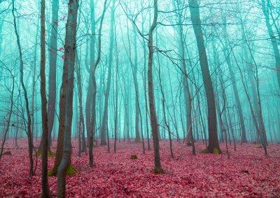 Sticker Mystischer Wald in rot und türkis