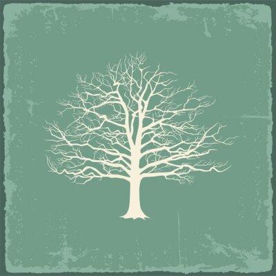 Sticker Old bare tree on vintage paper. Vector illustration