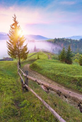 Old dirt road through the carpathian misty mountain valley