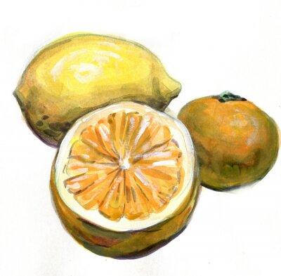 Sticker Orange, lemon, tangerine. Citrus fruits. Watercolor painting
