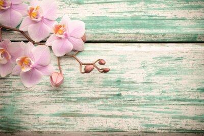 Sticker Orchid.