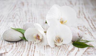 Sticker Orchids spa