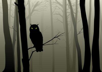 Sticker Owl In The Misty Woods